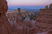 Bryce Canyon Acrylic Prints - Thors Hammer Acrylic Print by Photography by David Thyberg