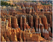 Sandstone Framed Prints - Those Hoodoos.  Bryce Canyon Framed Print by John Rav