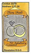 Revelation Drawings - Thou Shalt Not Commit Adultery by Chayla Dion Amundsen-Noland