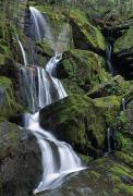 Roaring Fork Prints - Thousand Drips Waterfall, Roaring Fork Print by Natural Selection Robert Cable