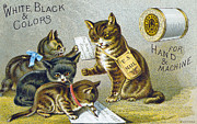 Bobbin Posters - Thread Trade Card, 1880 Poster by Granger