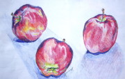 Apples Drawings Posters - Three Apples Poster by Jan Bennicoff