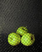 Net Photos - Three Apples by Viktor Savchenko