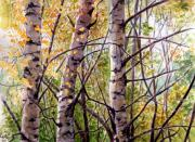 Russia Drawings - Three birches  by Svetlana Ledneva-Schukina