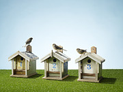 Number 3 Prints - Three Bird Houses In A Row With Sparrow On Top Print by Michael Blann