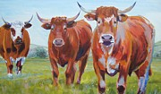 Mike Jory Cow Posters - Three Bulls Up Close Painting Poster by Mike Jory