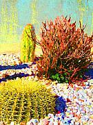 Amy Vangsgard - Three Cacti