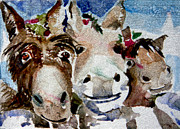 Donkeys Framed Prints - Three Christmas Donkeys Framed Print by Mindy Newman