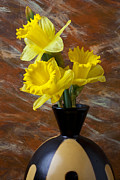Yellow Prints - Three Daffodils Print by Garry Gay