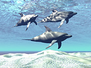 Dolphin Digital Art - Three Dolphins Swim Over A Sandy Reef by Corey Ford