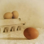 Kitchen Metal Prints - Three Eggs And A Egg Box Metal Print by Priska Wettstein