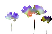 Contemporary Digital Art - Three Feeling Freesia by Angelina Vick