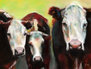 Cow Drawings Framed Prints - Three Generations of Moo Framed Print by Frances Marino