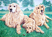 Puppies Drawings Framed Prints - Three Goldens and the Butterfly Framed Print by Pamela Whyman