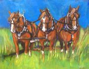 Carriage Team Framed Prints - Three is Company Framed Print by Debora Cardaci