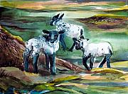 Shadows Drawings - Three Lambs by Mindy Newman