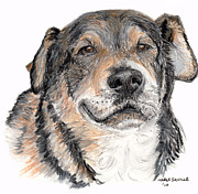 Dog Portraits Pastels Prints - Three legged Sweetie Print by Marla Saville