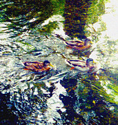 Duckies Prints - Three Little Duckies Print by Mindy Newman