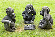Handcrafted Art - Three monkeys playing checkers by Tosporn Preede
