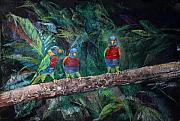 Parrot Pastels Prints - Three On A Branch II Print by Arline Wagner
