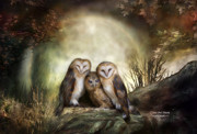 Wildlife Art Mixed Media Posters - Three Owl Moon Poster by Carol Cavalaris