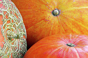 Ground Framed Prints - Three Pumpkins Framed Print by Carlos Caetano