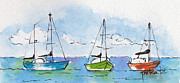 Watercolor And Ink Paintings - Three Sailboats Near Tahiti by Pat Katz