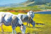 Flocks Painting Framed Prints - Three Sheep on a Devon Cliff Top Framed Print by Mike Jory