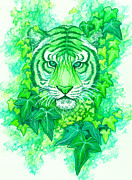 Green Foliage Drawings Prints - Through My Eyes Print by Amanda Klammer