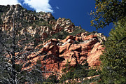 Oak Creek Canyon Prints - Through the Trees Print by John Rizzuto