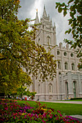 Salt Lake Temple Prints - Through the Trees Print by La Rae  Roberts
