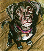 Pet Rescue By Judy Pastels Prints - Throw It Print by D Renee Wilson