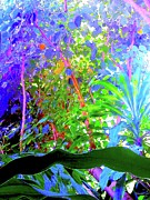 Impressionism Digital Art Prints - Thru Max 4 Print by Nina Kaye