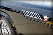 Karyn Robinson - Thunderbird V8 Insignia
