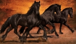 Digital Art Art - Thundering Hooves by Jean Hildebrant