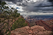 Wandern Posters - Thunderstorm - Grand Canyon Poster by Andreas Freund