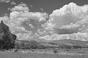 Thunderheads Framed Prints - Thunderstorm Clouds Boiling Over The Colorado Rocky Mountains BW Framed Print by James Bo Insogna