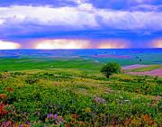 Storm Digital Art Metal Prints - Thunderstorm over The Palouse Metal Print by Margaret Hood