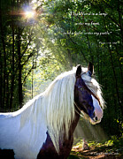 Equine Digital Art Posters - Thy Word Is Poster by Terry Kirkland Cook