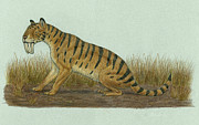 The Tiger Metal Prints - Thylacosmilus Atrox, A Genus Metal Print by Heraldo Mussolini