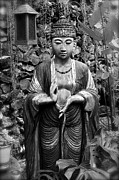 Tibetan Buddhism Metal Prints - Tibetan Buddha Metal Print by Karon Melillo DeVega