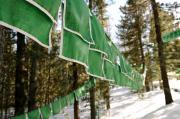 Tibetan Buddhism Prints - Tibetan prayer flags Print by Jessica Rose