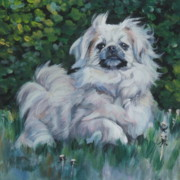 Tibetan Paintings - Tibetan Spaniel in field by Lee Ann Shepard