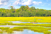 Lowcountry Framed Prints - Tidal Castaway Framed Print by Scott Hansen