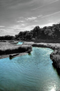 Tidal Creek Prints - Tidal Marsh Print by Drew Castelhano