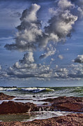 Tidal Pool Photos - Tidal Pool  by Douglas Barnard