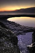 Lowcountry Prints - Tidal Pool Reflections Print by Dustin K Ryan