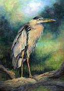 Blue Heron Drawings Prints - Tidal Watch II Print by Sherry Egger