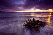 Sunset Framed Prints - Tide Driven Framed Print by Mike  Dawson