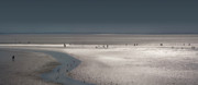 Wadden Sea Prints - Tidelands Print by Marc Huebner